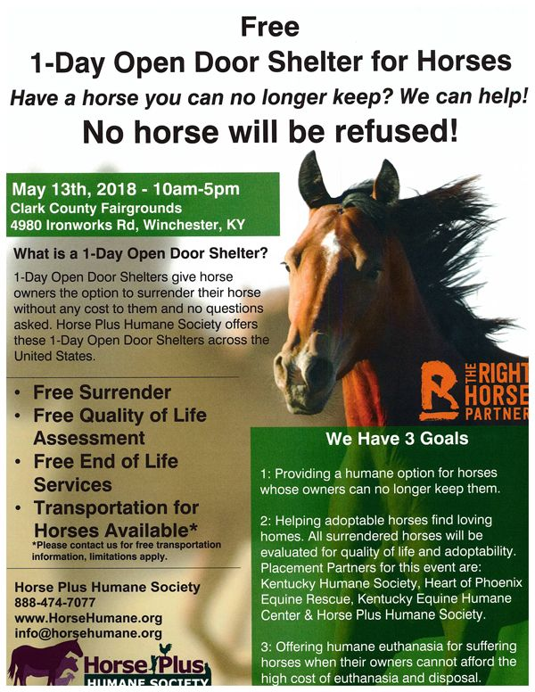 1 day open shelter horses may 13 18